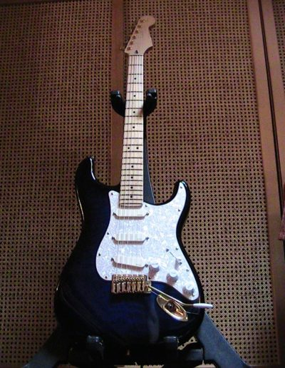 Assembled Strat by Jacaranda (Stewart Mac Donald's parts and pickups EMG DG20 David Gilmour)