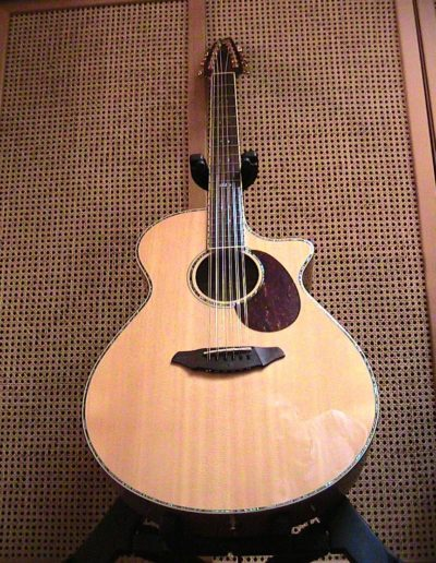 Breedlove AJ 250 SF - 12 plus