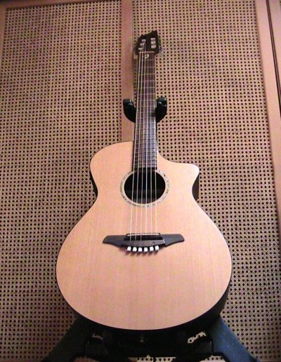 Breedlove AN 250:CR